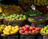 Quels fruits pouvons-nous assembler?